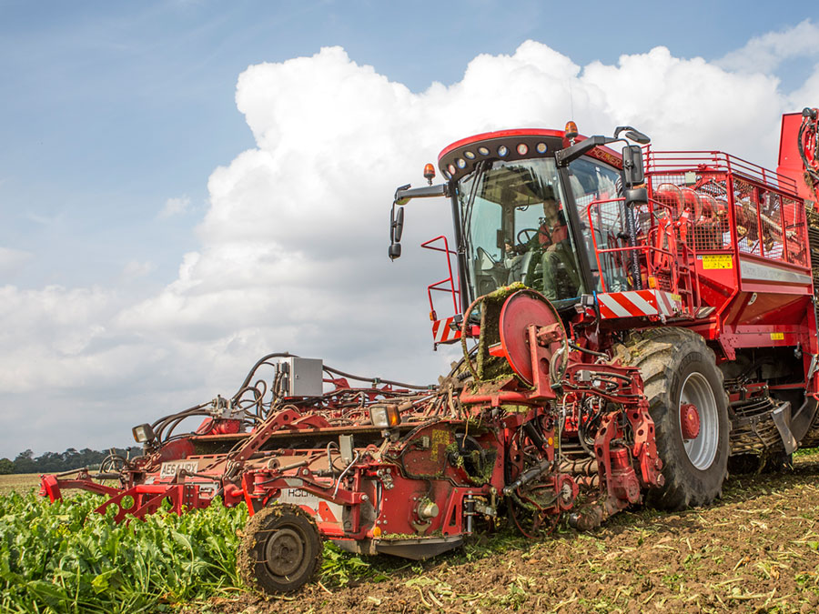 Beet Harvesting Herefordshire